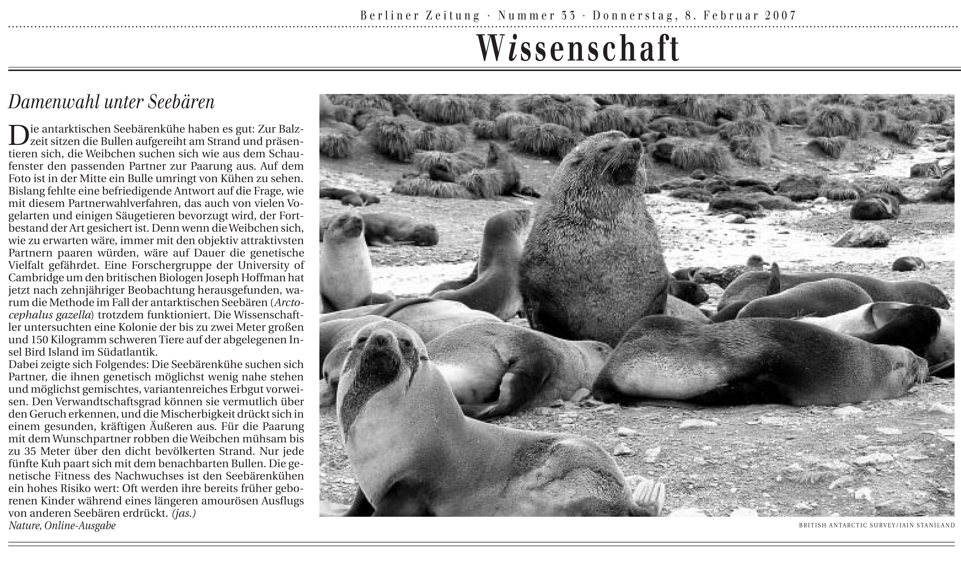 Article in the Berliner Zeitung, 2007
